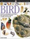 Bird by David Burnie