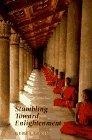Stumbling Toward Enlightenment by Geri Larkin