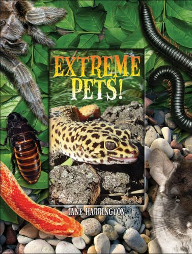 Extreme Pets