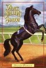 The Black Stallion's Shadow (Black Stallion Returns, #1)