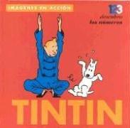Tintin: 123 Descubro Los Numeros