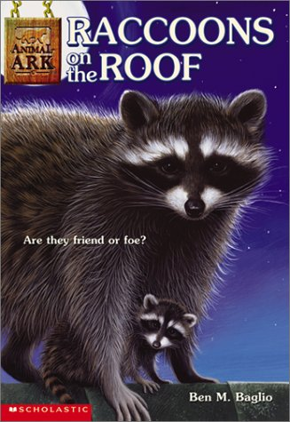 raccoons-on-the-roof