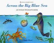 Across The Big Blue Sea