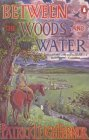 Between the Woods and the Water: On Foot to Constantinople from the Hook of Holland