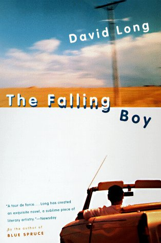 The Falling Boy by David  Long