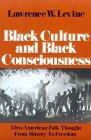 Black Culture and...