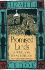 Promised Lands: A Novel of the Texas Rebellion