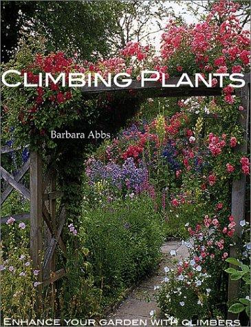 Climbing Plants: Enhance Your Garden with Climbers