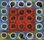 Joan Snyder: Primary Fields
