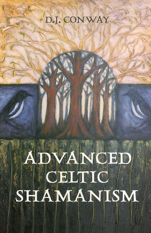 Advanced Celtic Shamanism by D.J. Conway