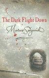 The Dark Flight Down (Book of Dead Days, #2)