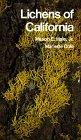 Lichens of California