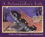 A Salamander's Life by John Himmelman