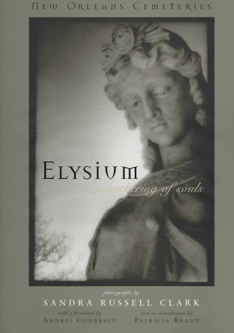 Elysium--A Gathering of Souls by Sandra Russell Clark