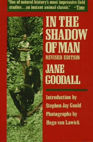Image result for in the shadow of man