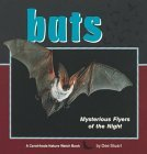 bats-mysterious-flyers-of-the-night