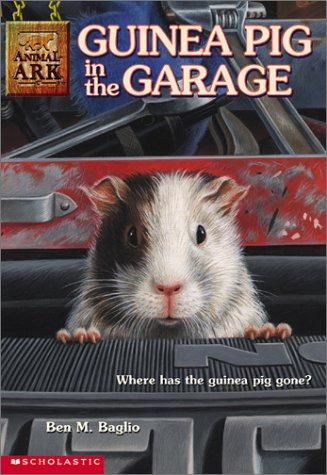 guinea-pig-in-the-garage