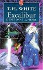 Excalibur  l'épée dans la pierre by T.H. White