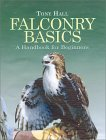 Falconry Basics: A Handbook for Beginners