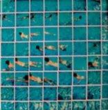Cameraworks by David Hockney