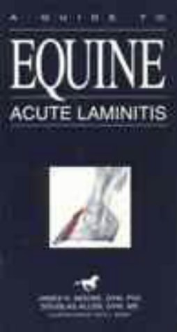 A Guide to Equine Acute Laminitis