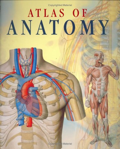 Atlas Of Anatomy by Giovanni Iazzetti