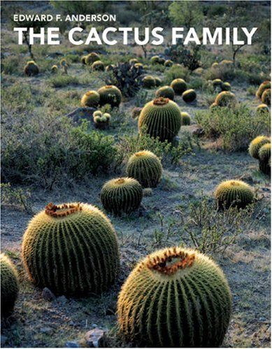 the-cactus-family