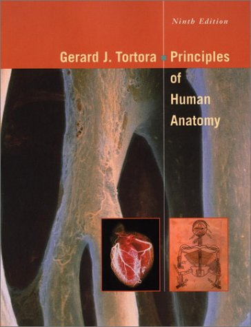 Principles Of Human Anatomy By Gerard J Tortora