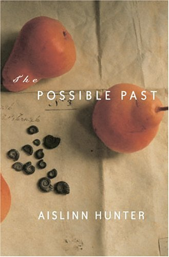 The Possible Past by Aislinn Hunter
