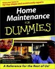 Home Maintenance for Dummies?