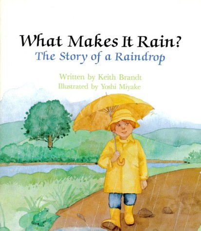 What Makes It Rain? The Story of a Raindrop by Keith Brandt