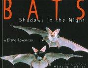 Bats: Shadows in the Night