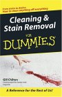 Cleaning & Stain Removal for Dummies