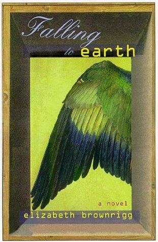Las primeras 20 horas de descarga de un libro electrónico Falling to Earth