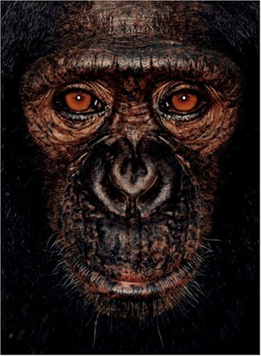 James and Other Apes by James Mollison