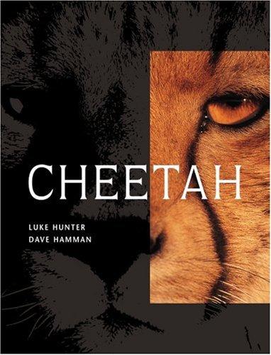 Cheetah Descargar libros gratis en la esquina