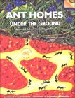 Ant Homes Under the Ground: Science and Math Activities for Young Children