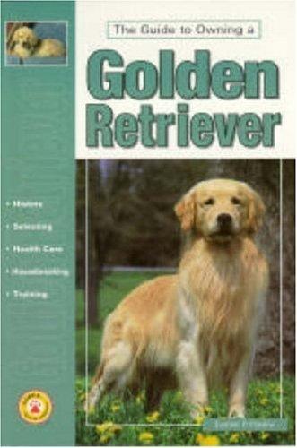 Guide to Own Golden Retriever