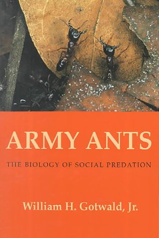 Army Ants: The Biology Of Social Predation