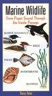 Marine Wildlife: From Puget Sound Through the Inside Passage
