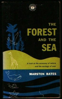 The Forest and the Sea