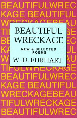 Beautiful Wreckage by W.D. Ehrhart