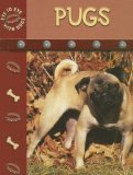 Pugs (Eye To Eye With Dogs)