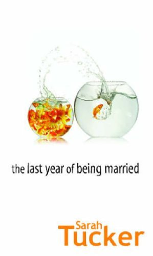 The Last Year Of Being Married (Mira)