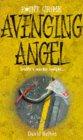 Avenging Angel (Point Crime)