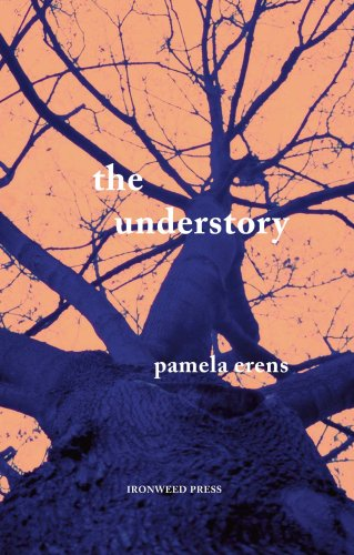 The Understory by Pamela Erens