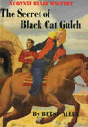 The Secret of Black Cat Gulch (A Connie Blair Mystery, #4)