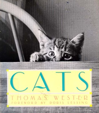 Cats: Thomas Wester