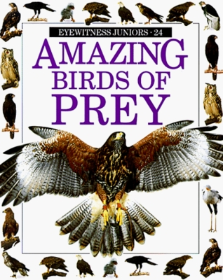 Birds Of Prey Visual Explorers