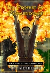 Fire and Flood (Prophet of Panamindorah #3)